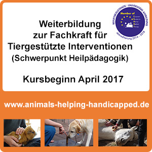 animals-helping-handicapped